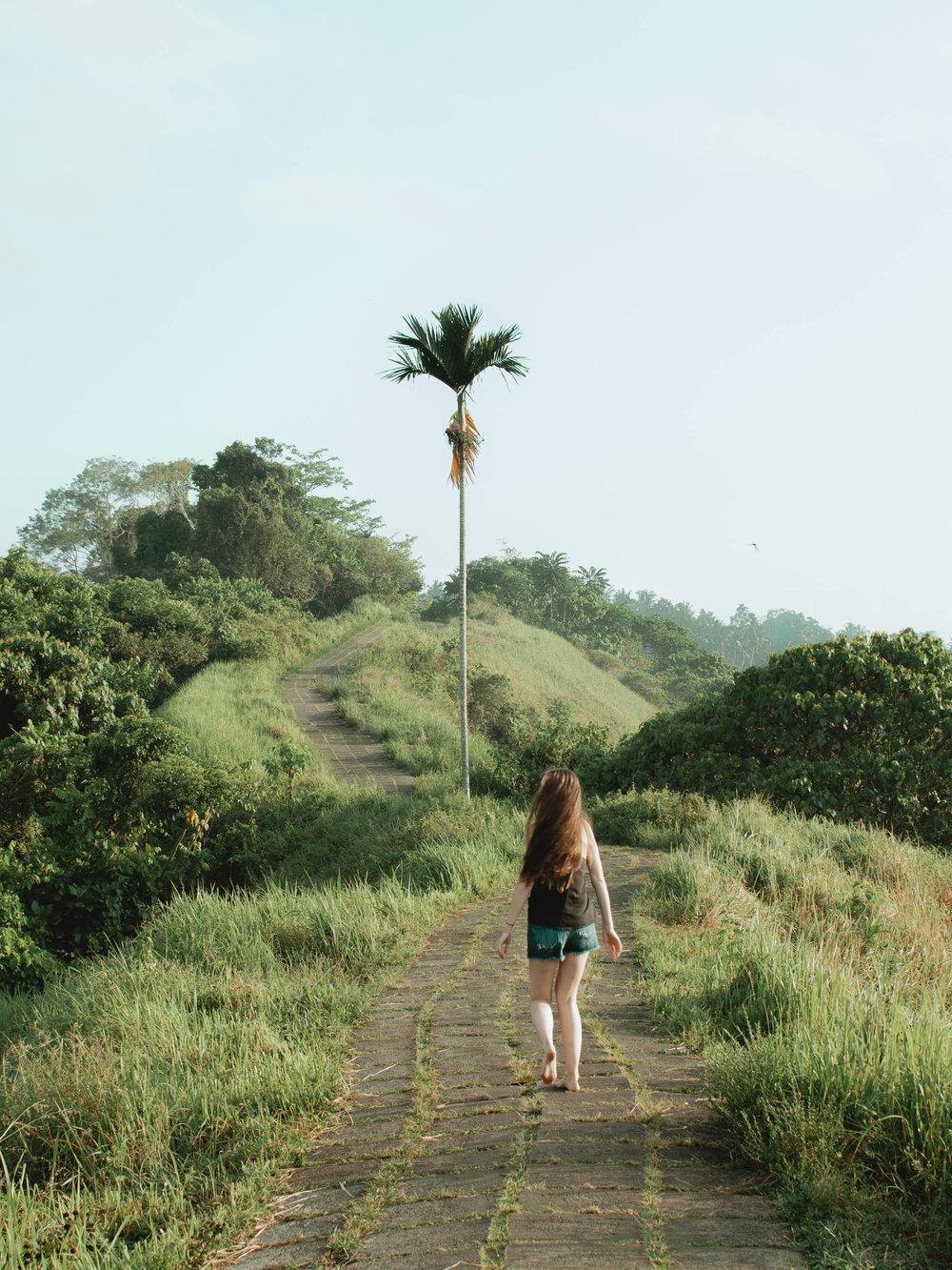 Walking the Campuhan Ridge Walk in Ubud, Bali