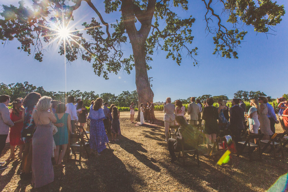 This intimate ceremony site in the vineyard was absolutely incredible!