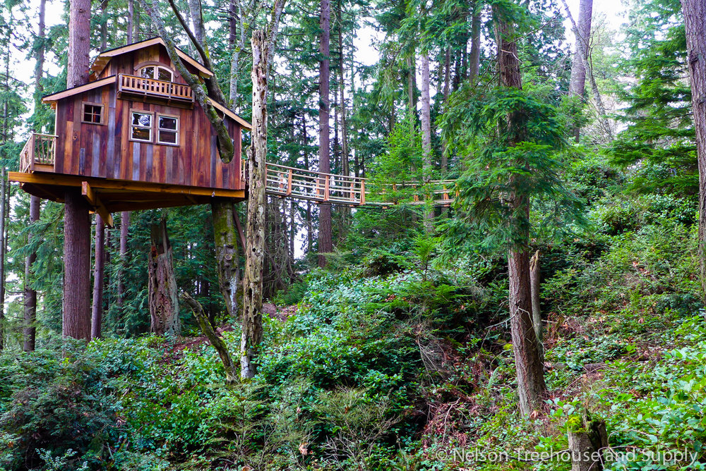 Pirate Treehouse in Washington State