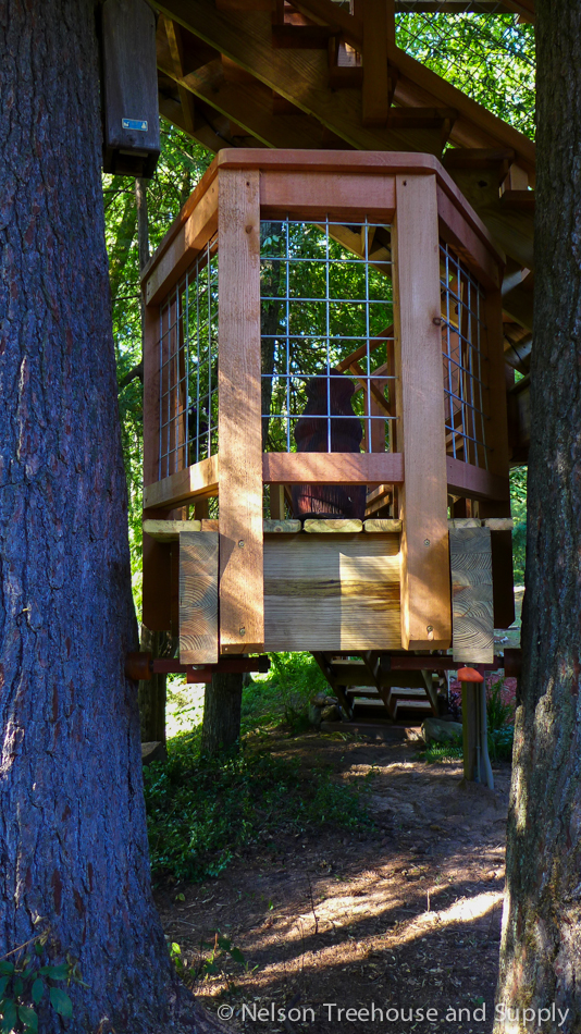 chang_treehouse_exterior_hogwire