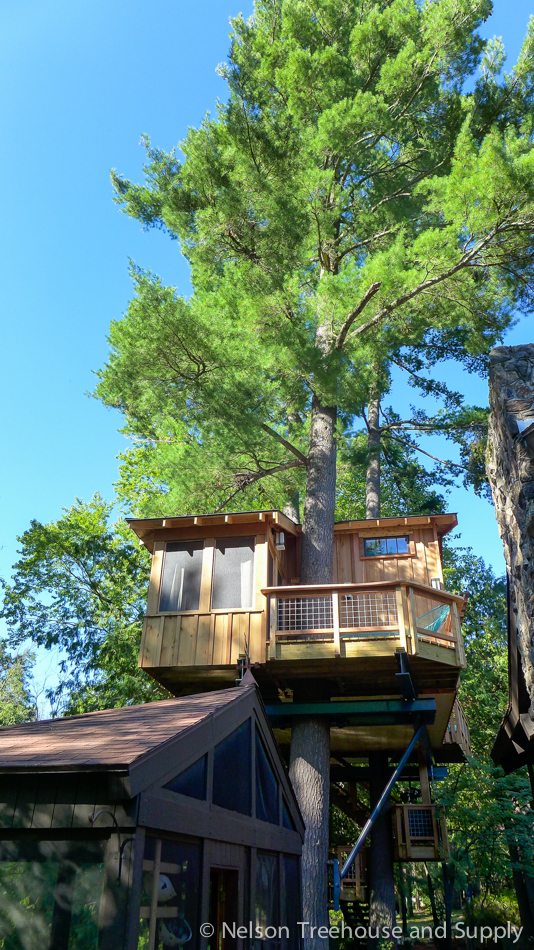 chang_treehouse_exterior_3