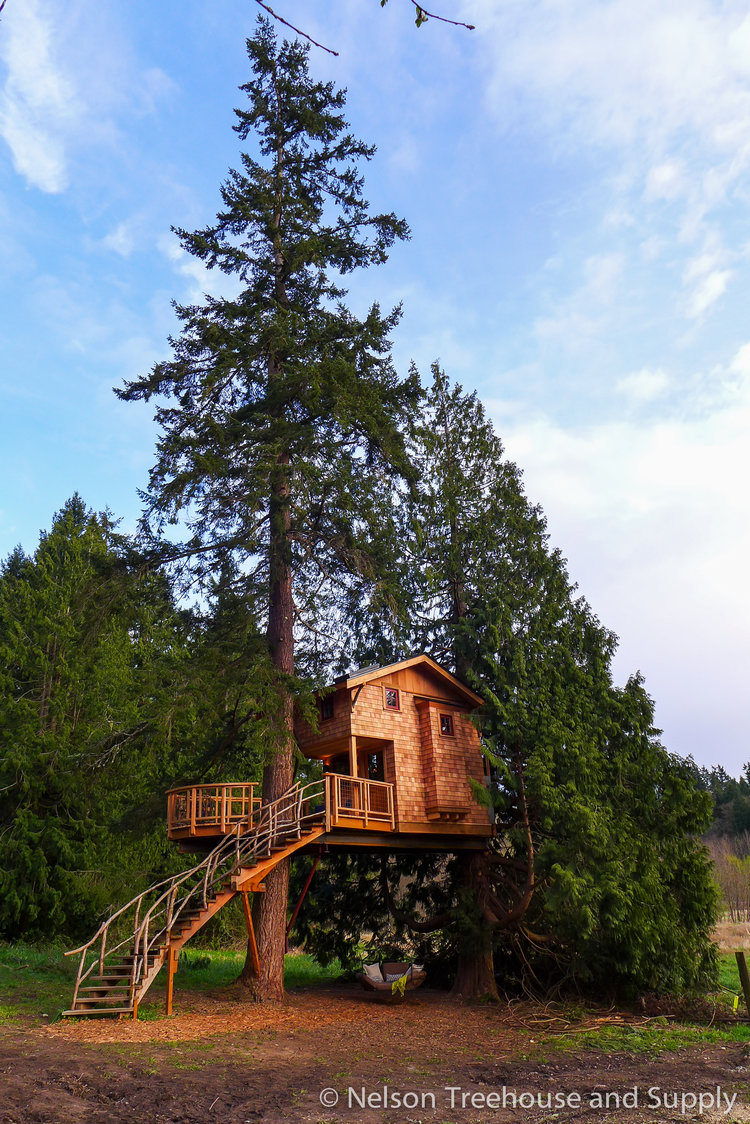 treehouse masters spa. Treehouse Resort And Spa Charlie Masters
