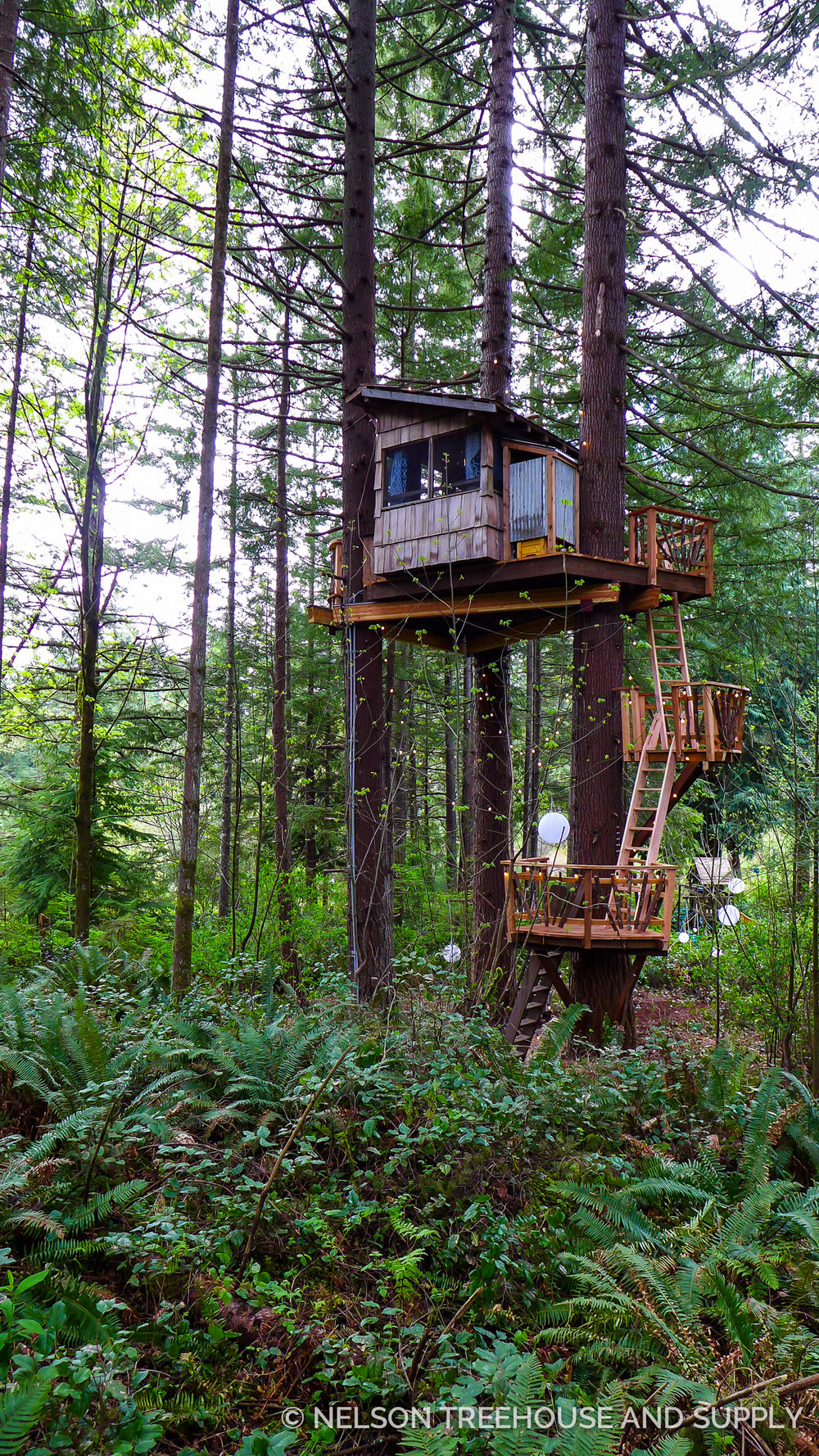 Series of ladders ascend to Emily and Patrick's treehouse in Washington.