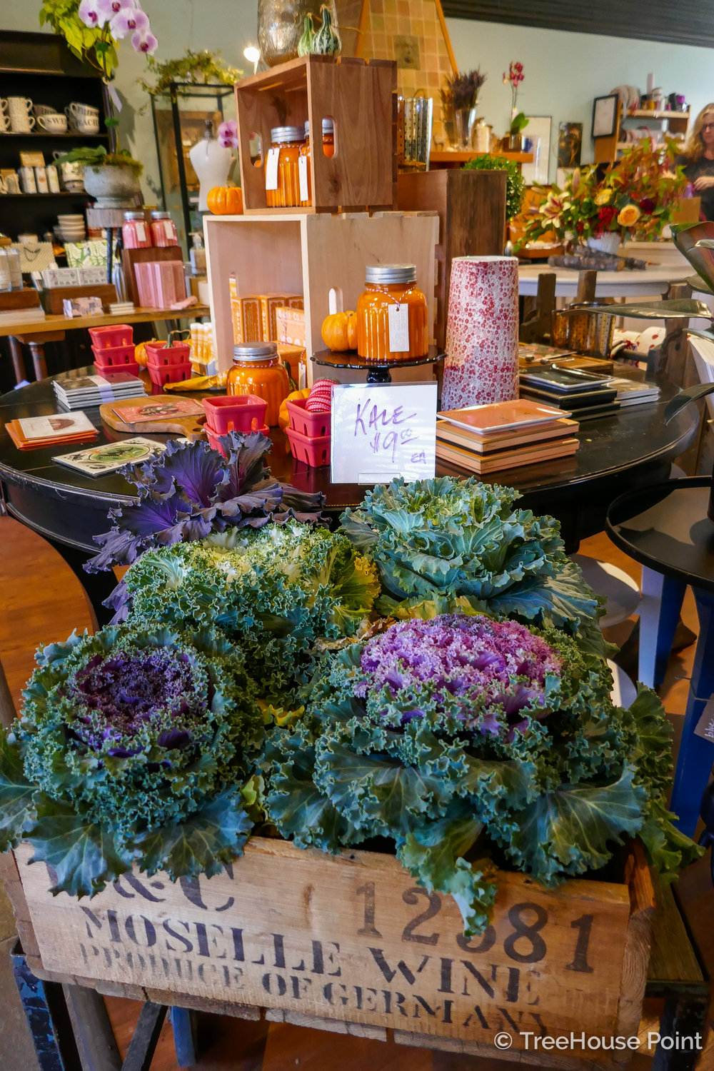 down to earth flowers shop display