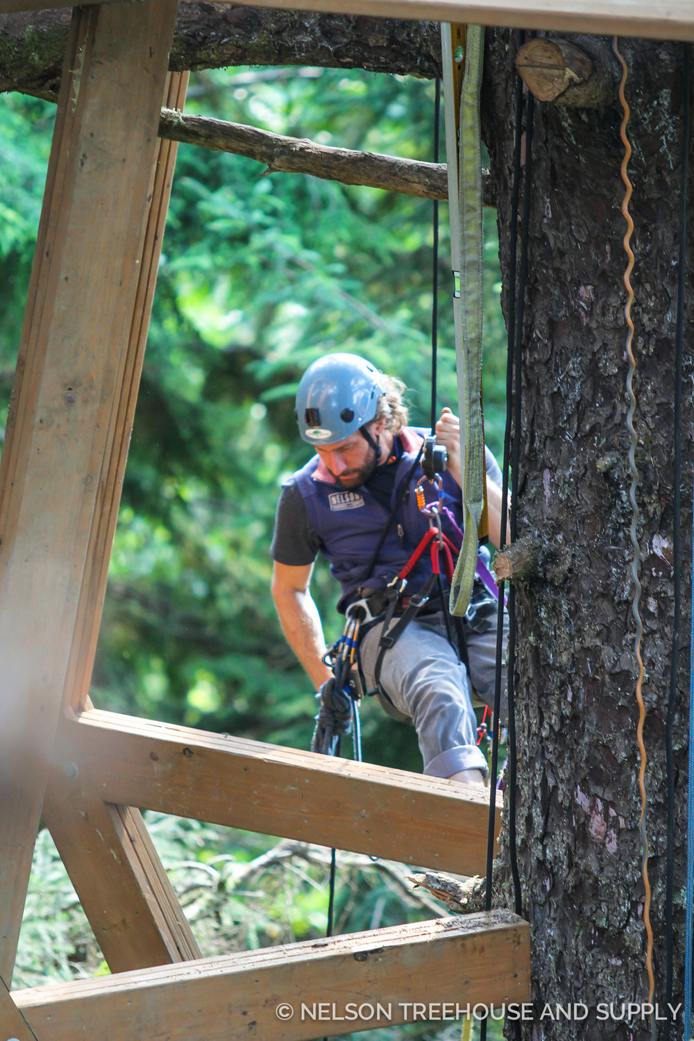 alex treehouse masters. Alex Meyer Nelson Treehouse Masters