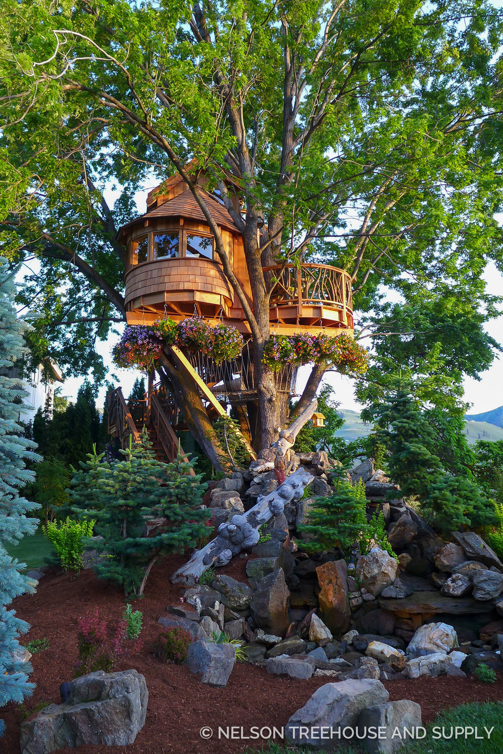 Maple Treehouse Part Maple Tree House Home Decorating