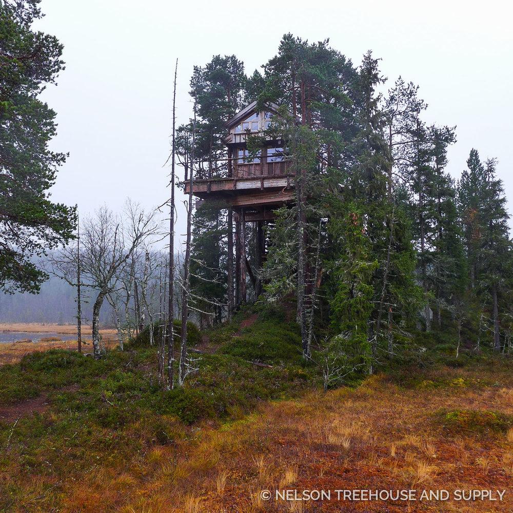 Tree_Top_Huts_Norway_2016-31.jpg