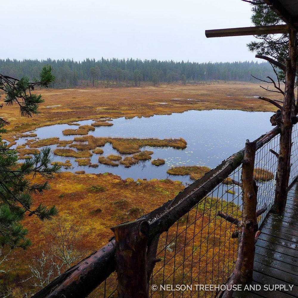 Tree_Top_Huts_Norway_2016-44.jpg