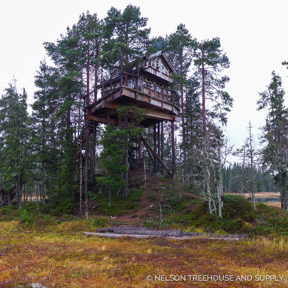 Tree_Top_Huts_Norway_2016-81.jpg