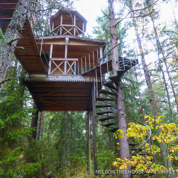 treehouse masters mirrors treehouse masters mirrors s