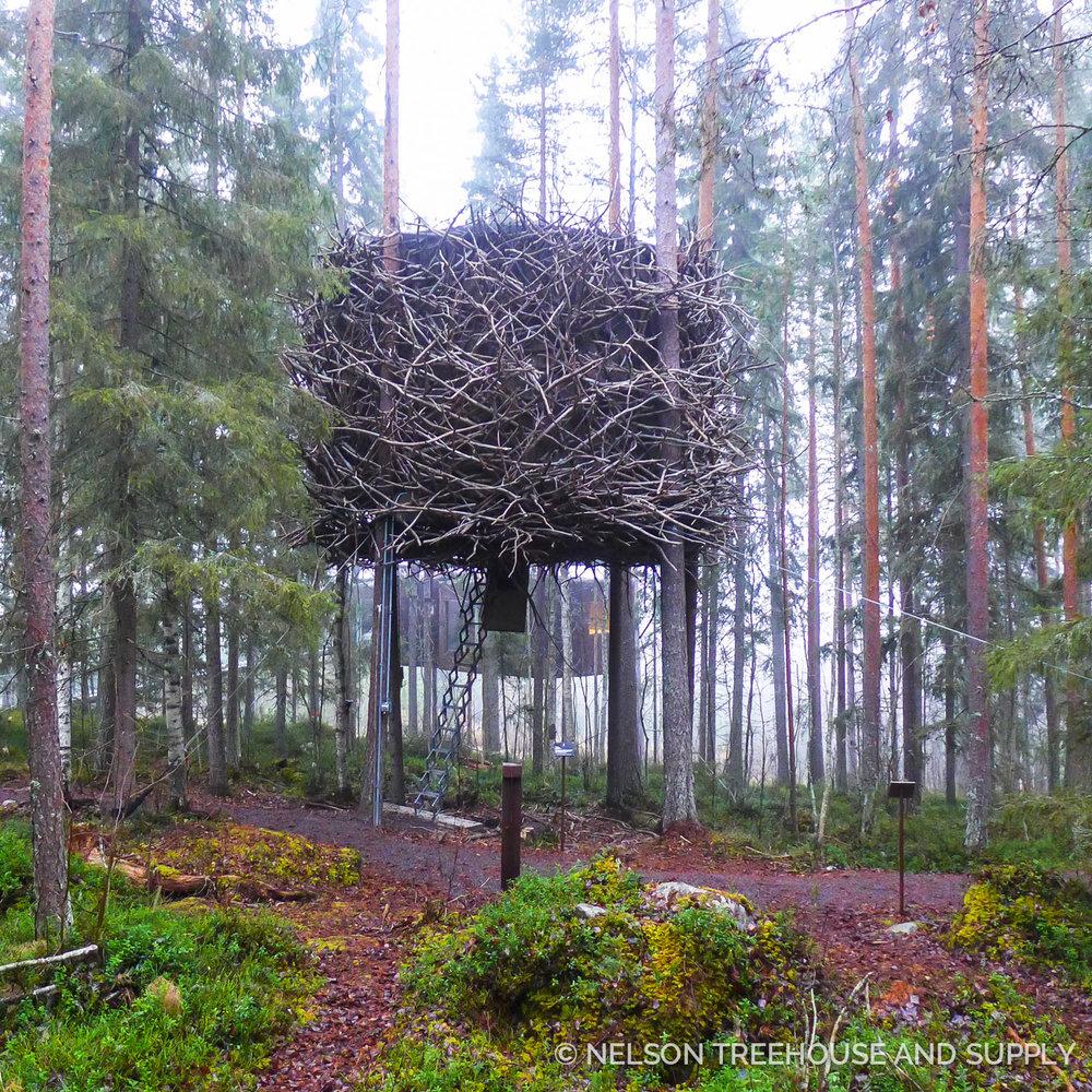 Tree_Hotel_Sweden_2016-32.jpg