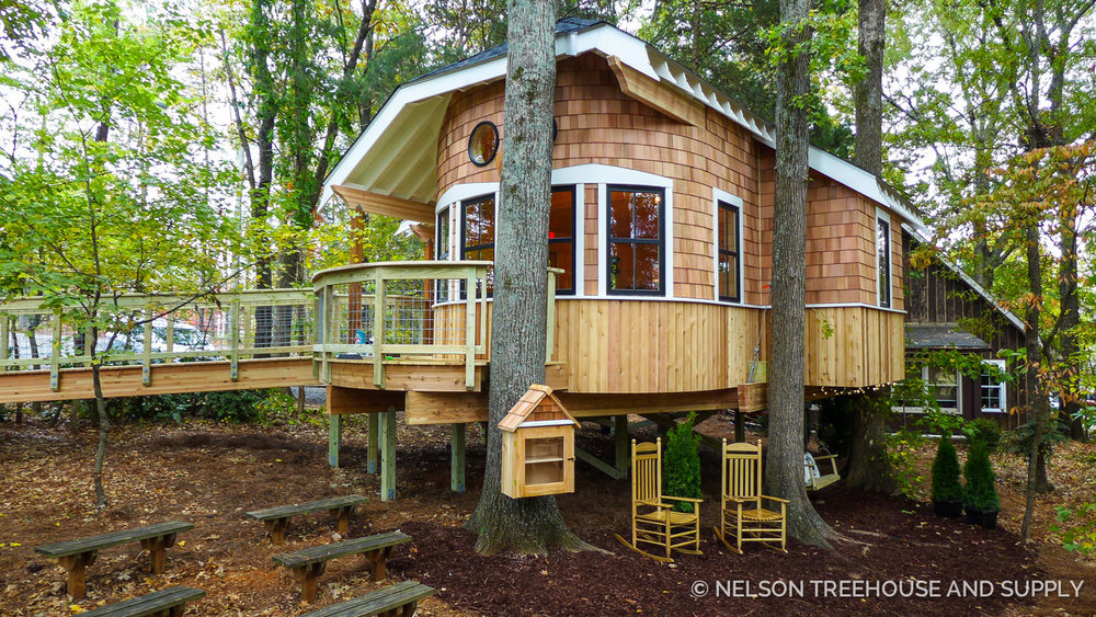 Treehouse Masters Prices photo tour: owl's nest treehouse library — nelson treehouse
