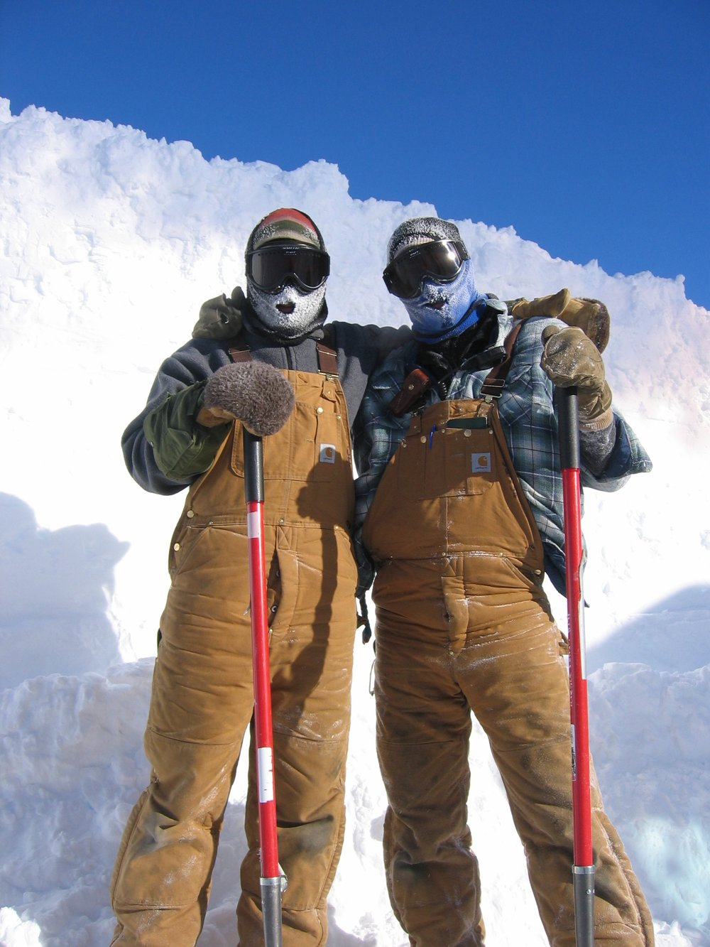 Antarctica's best carpenters!