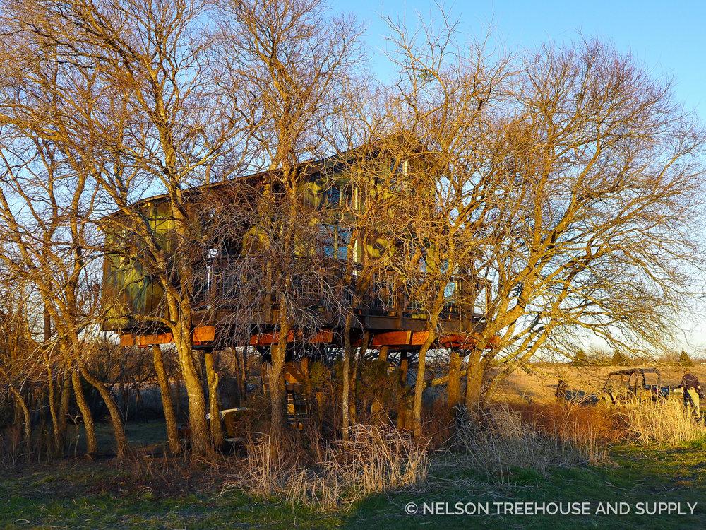 Nelson Treehouse Camo treehouse