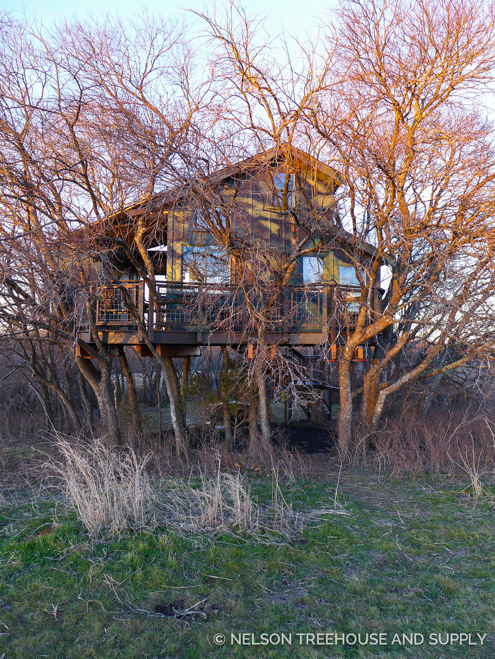 Treehouse Masters Mirrors camo treehouse — nelson treehouse