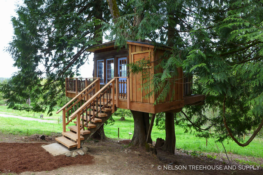 two treehouse remodels nelson treehouse rh nelsontreehouse com Treehouse Clip Art Treehouse Drawings