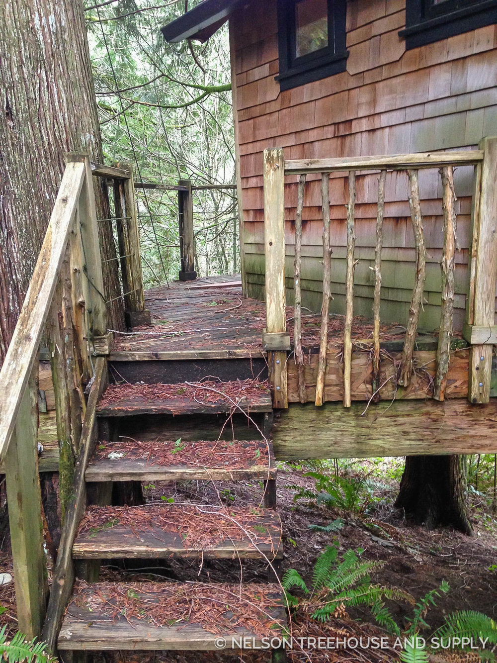 Treehouses in wet environments like the Pacific Northwest require upkeep to prevent wood rot. The crew replaced the stairs, railings, and deck with pressure-treated wood.