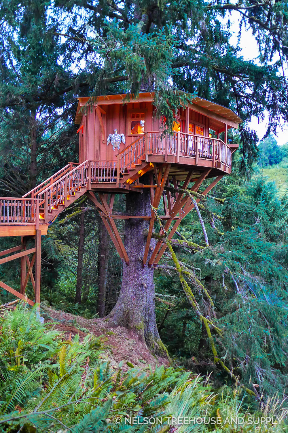 Pete Nelson Single Tree Treehouse
