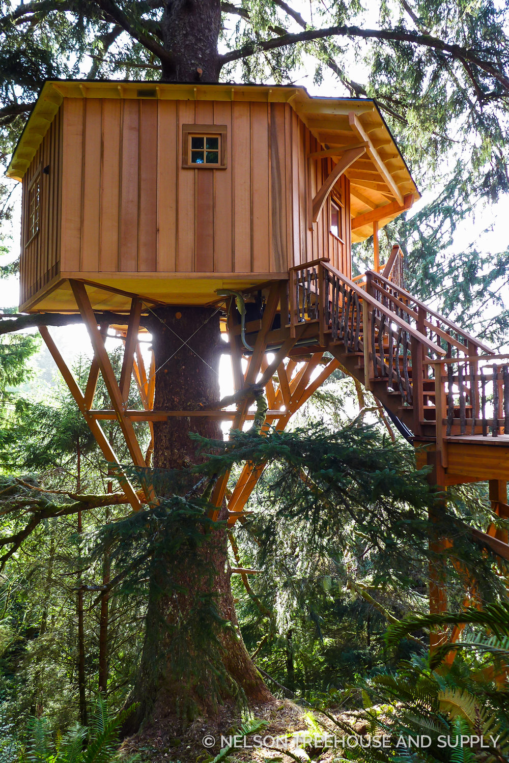 single spruce treehome nelson treehouse
