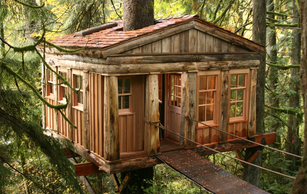 visit treehouse point - Treehouse