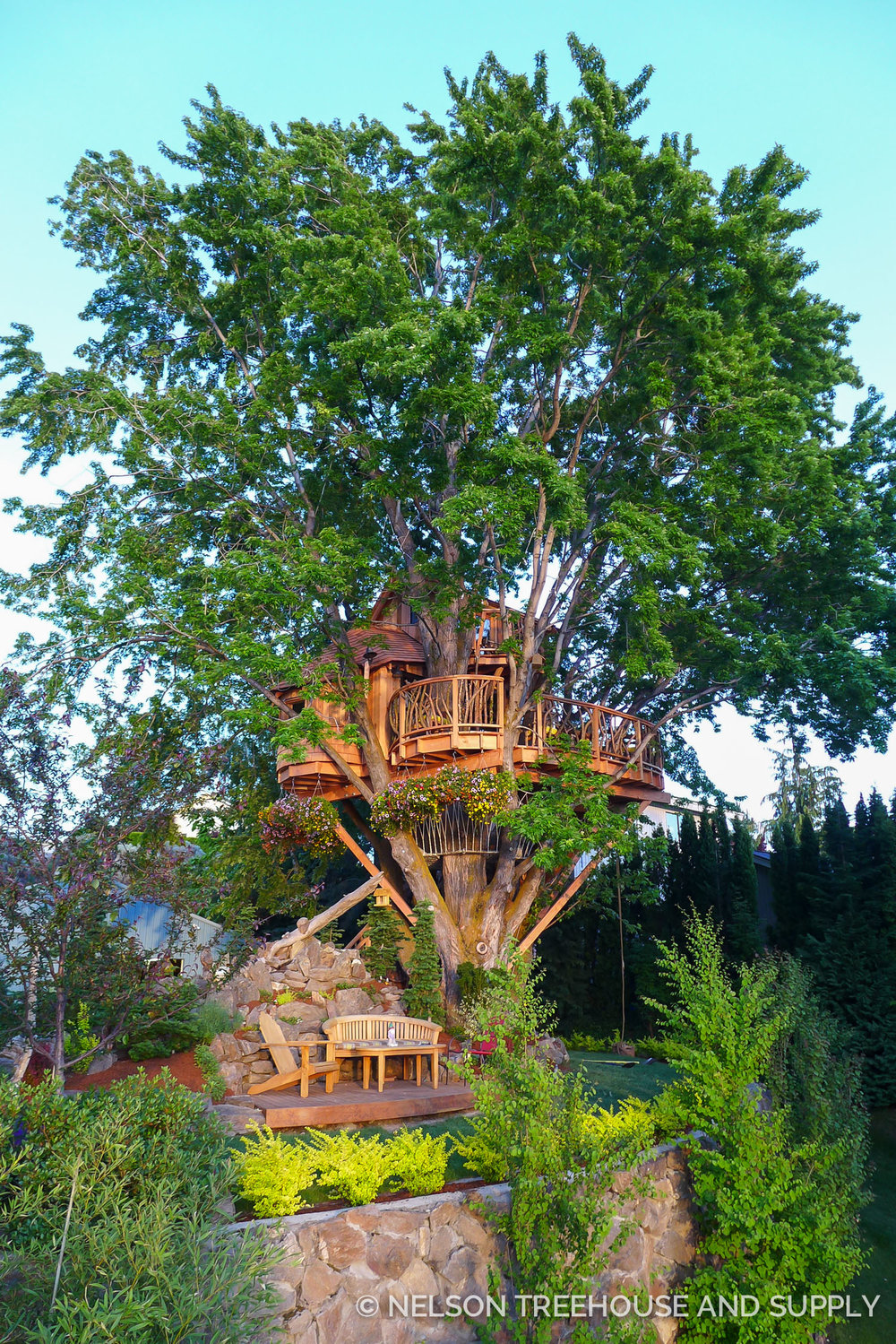 Nelson Treehouse Mindbending Maple