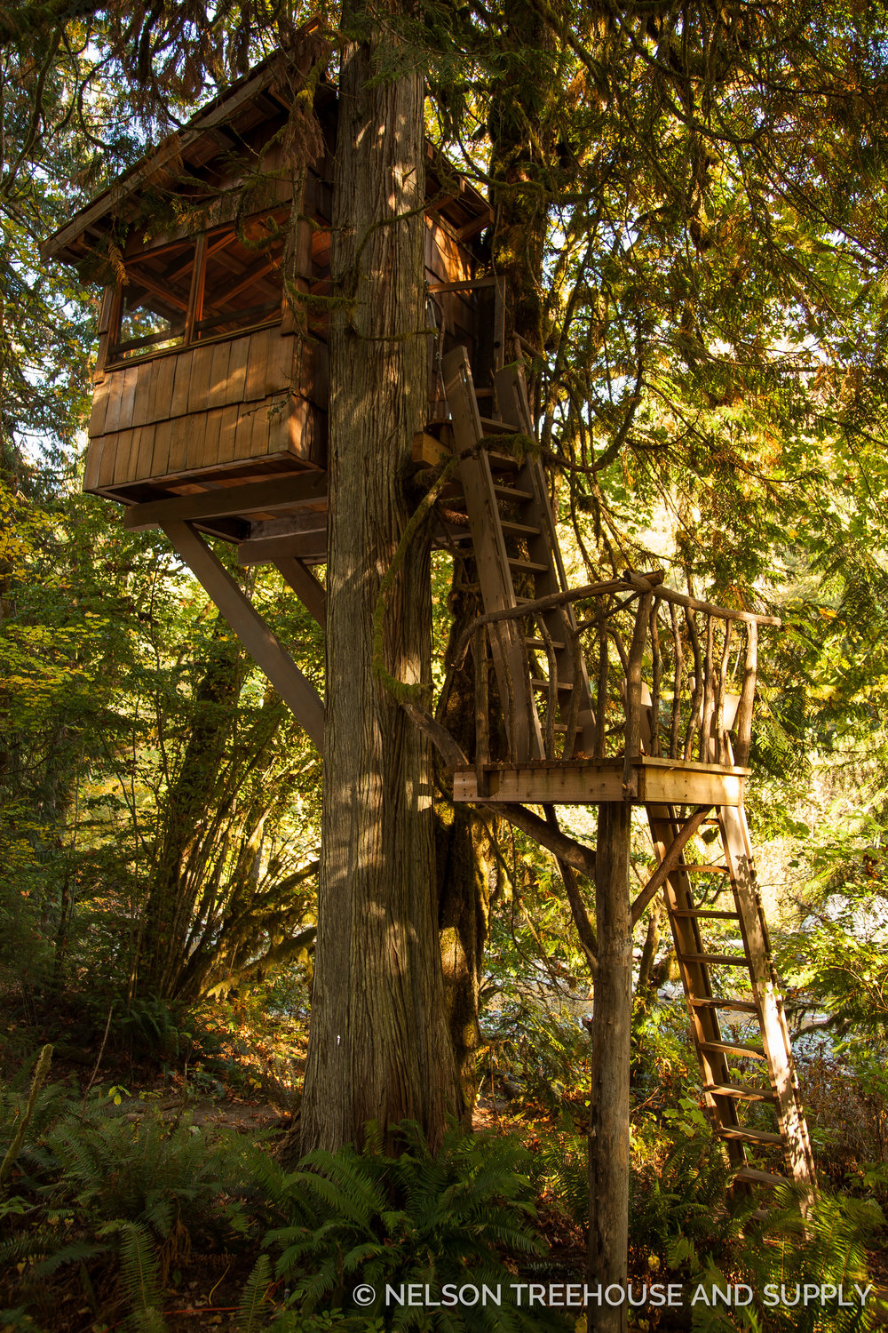 Bird Blind TreeHouse Point