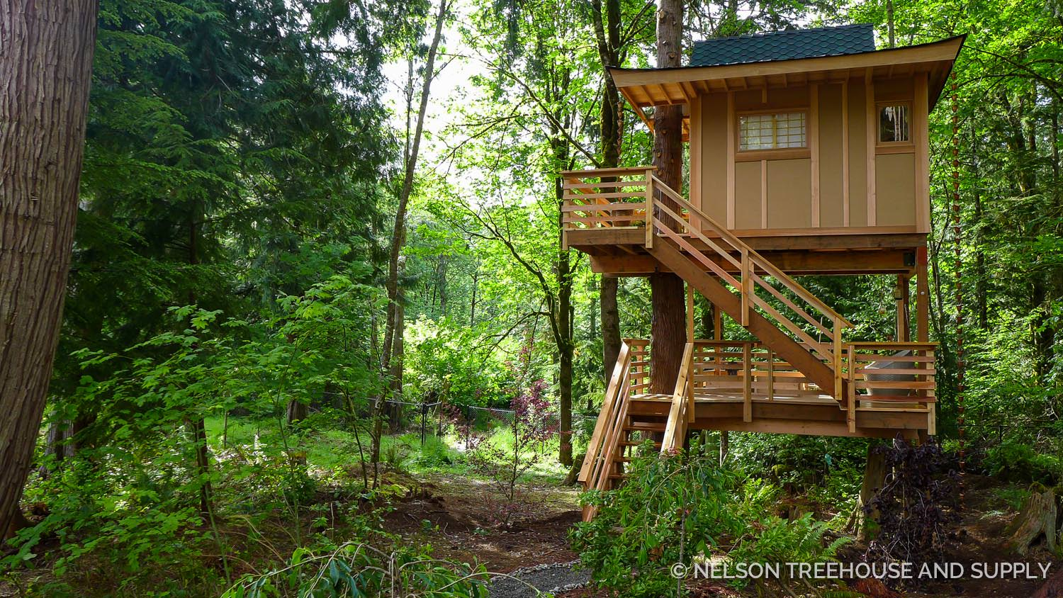 Treehousefriday Towering Treetop Teahouse Nelson Treehouse