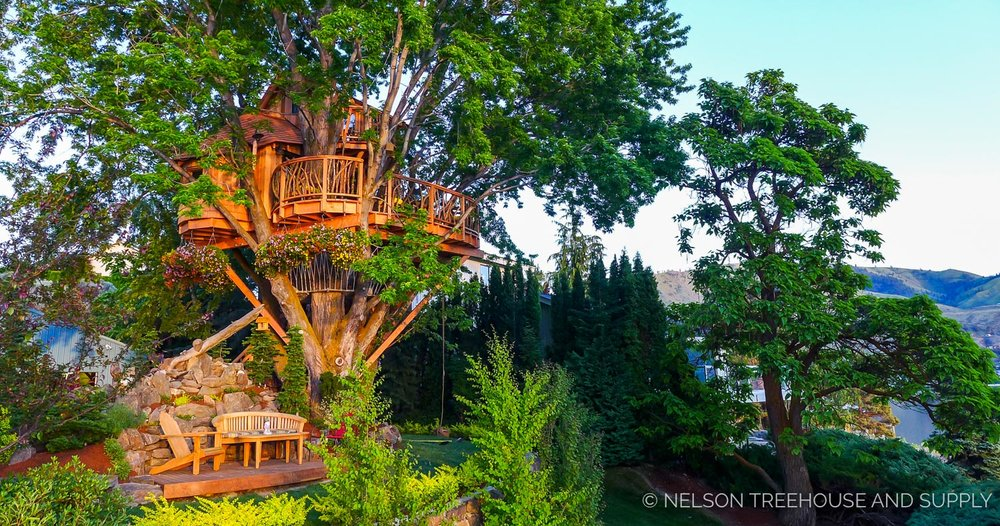 faq nelson treehouse - Treehouse Masters Prices