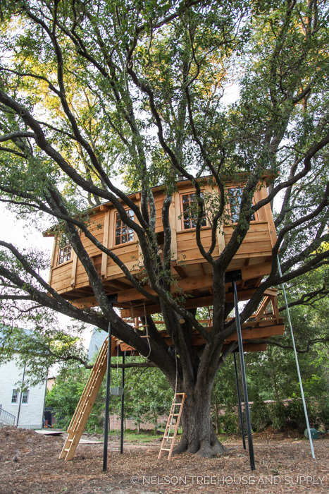 QUERCUS TREEFORT-ICUS    Location:  Texas  Year Built:  2016  Square Feet:  128  Elevation:  17 ft Combination tree- and steel-supported  Seasonality:  All-season    CLICK FOR PHOTO TOUR >>