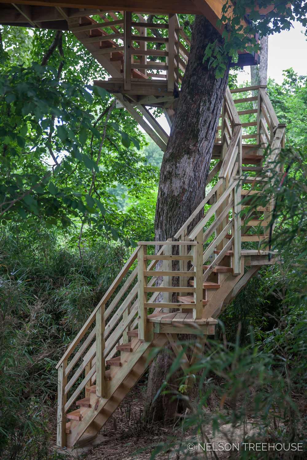 TenNessee Riverbank Treehouse Spiral Staircase