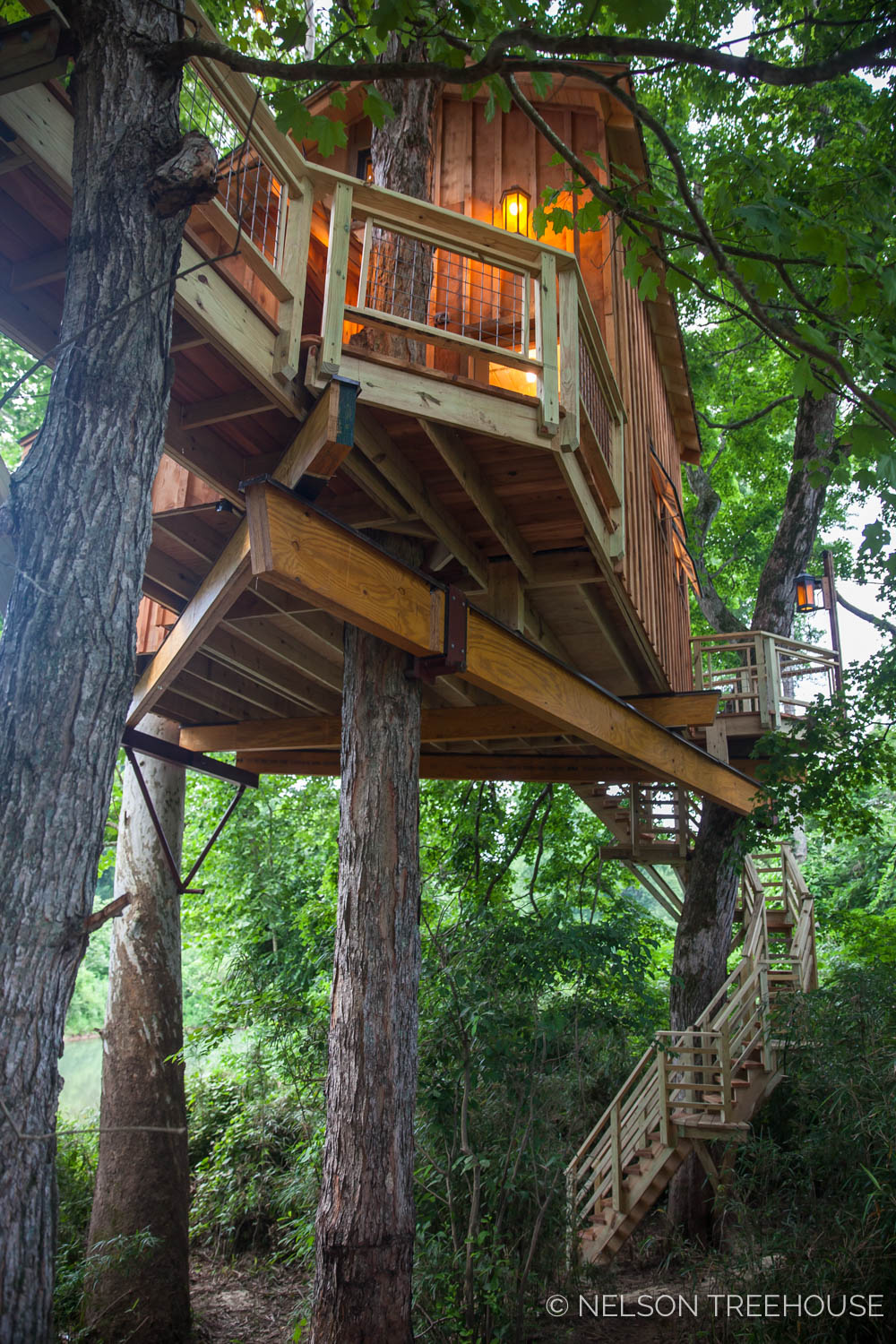 TenNessee Riverbank Treehouse Trees