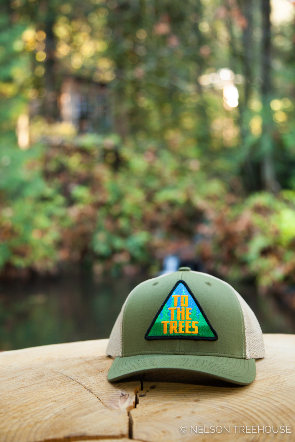 Nelson Treehouse Snapback Hat with To the Trees Patch