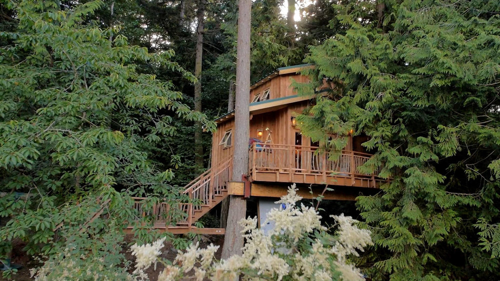canopy-camp_001.jpg