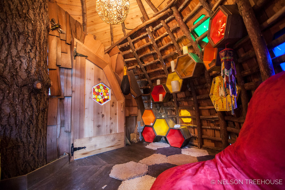 inside the beehive treehouse - Treehouse Masters Inside