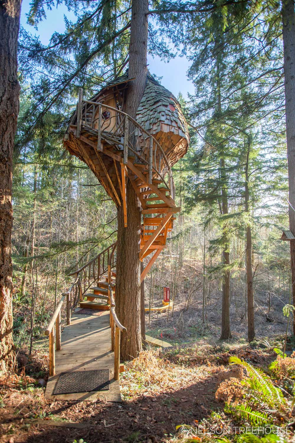 The Beehive Treehouse Showcases A Stellar Set Of Winding Treehouse Stairs.