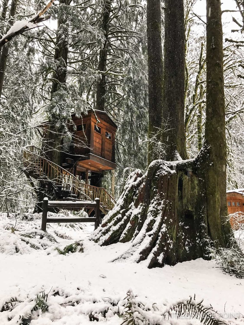 Bonbib Treehouse in the winter