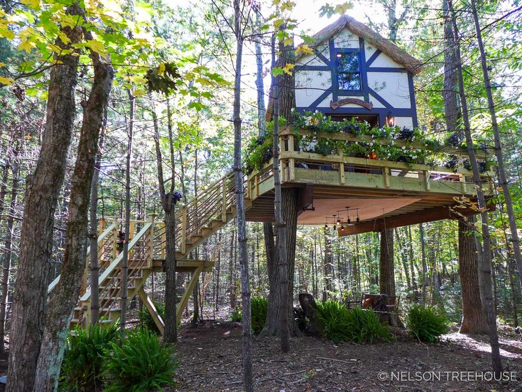 Treetop Theater — Nelson Treehouse