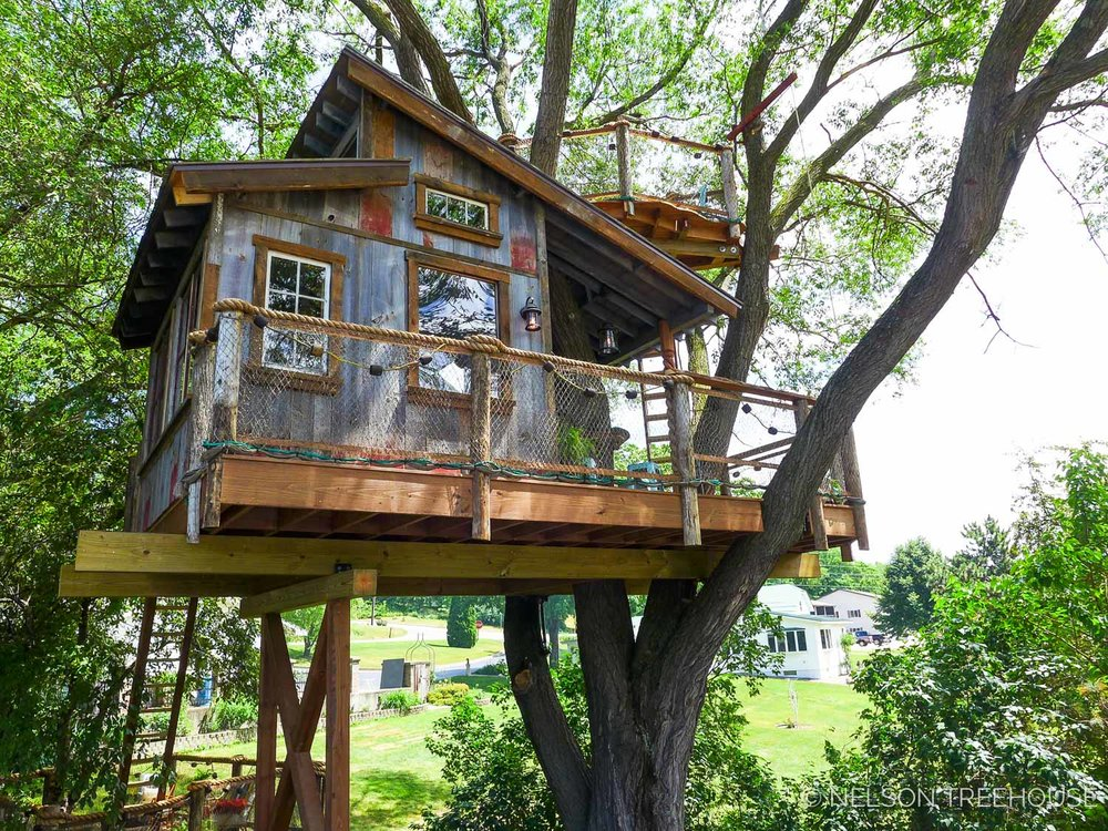 Tree House Pictures Design