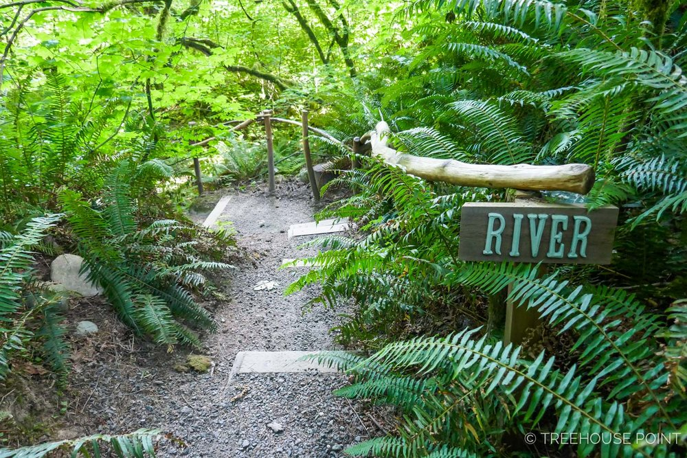 The path to the riverbank at Treehouse Point.