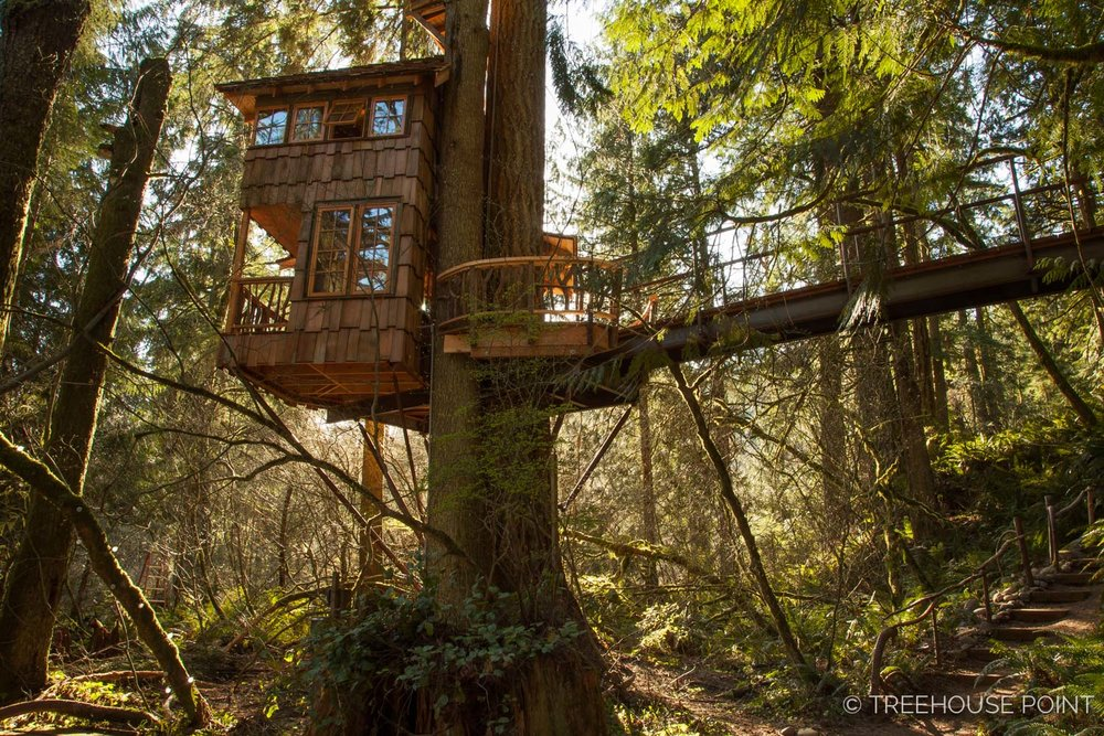 """The burl treehouse is also known as the """"Honeymoon suite,"""" as it's a favorite of many newlyweds."""