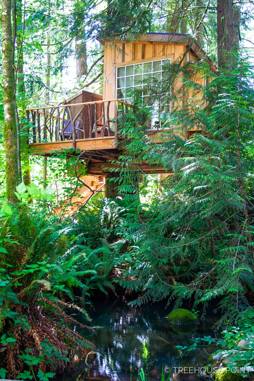The nest is the only treehouse with a theme: it's designed and decorated to subtly allude to a bird's nest.