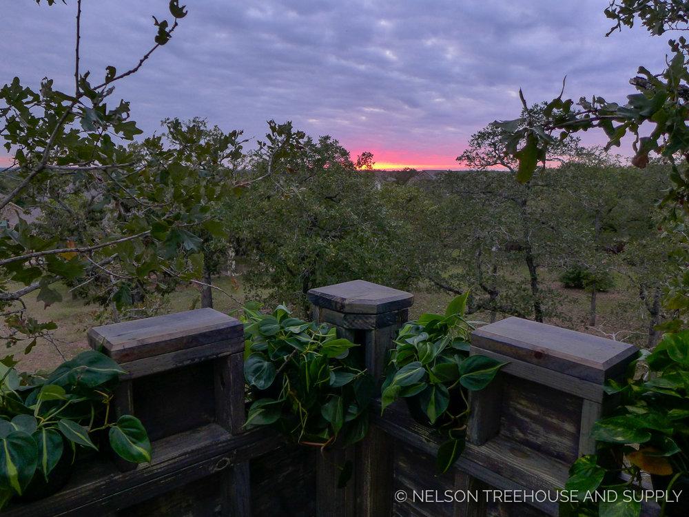 Bastrop-TX-2017-Nelson-Treehouse-12.jpg