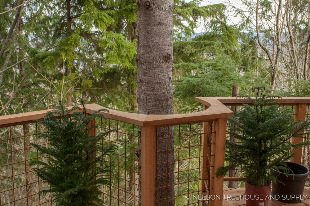 Bulldog Bungalow deck detail - nelson Treehouse