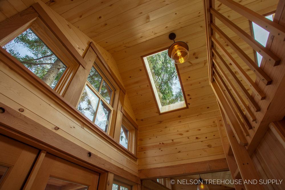 Bulldog Bungalow skylight - nelson Treehouse