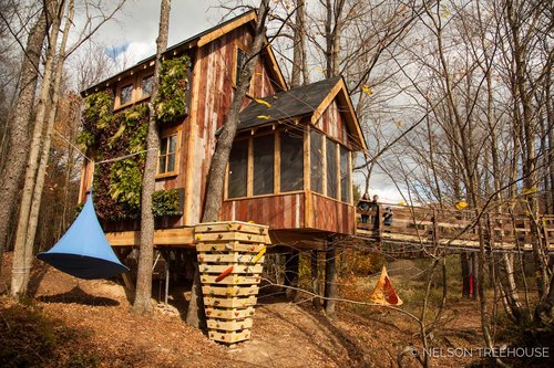 treehouse masters brewery. Treehouse Masters Season 2, Episode 2: Temple Of Adventure Brewery