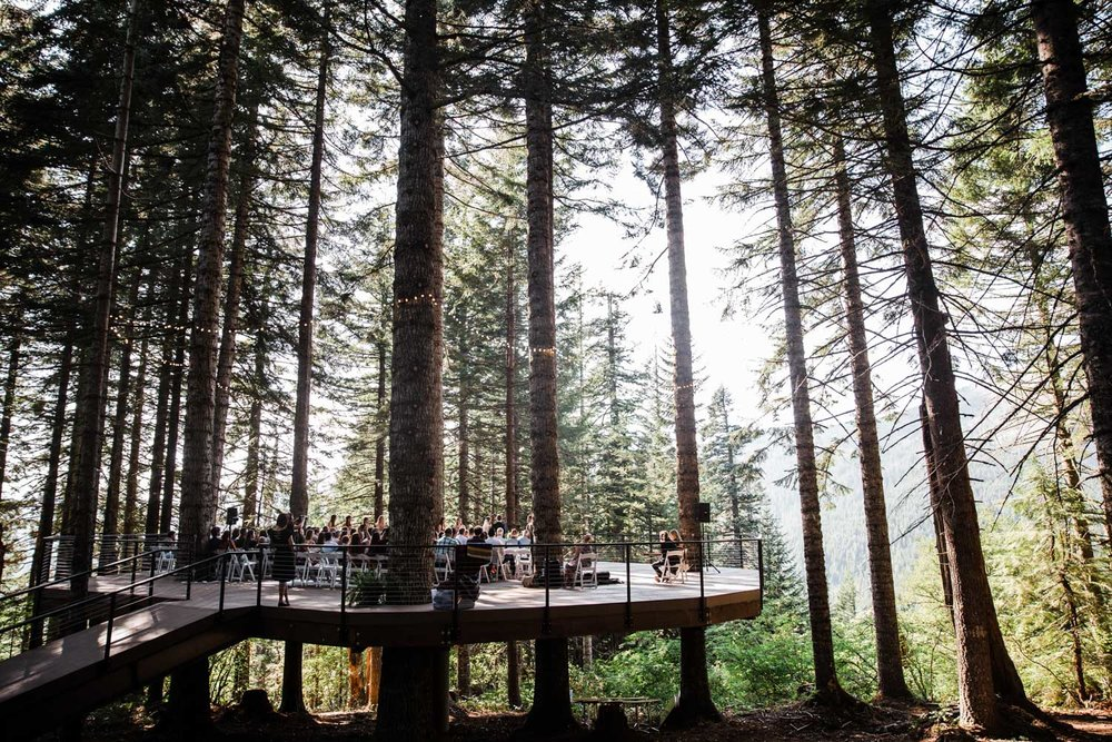 Phil's Tree-deck. Photo by  The Hearnes Adventure Photography