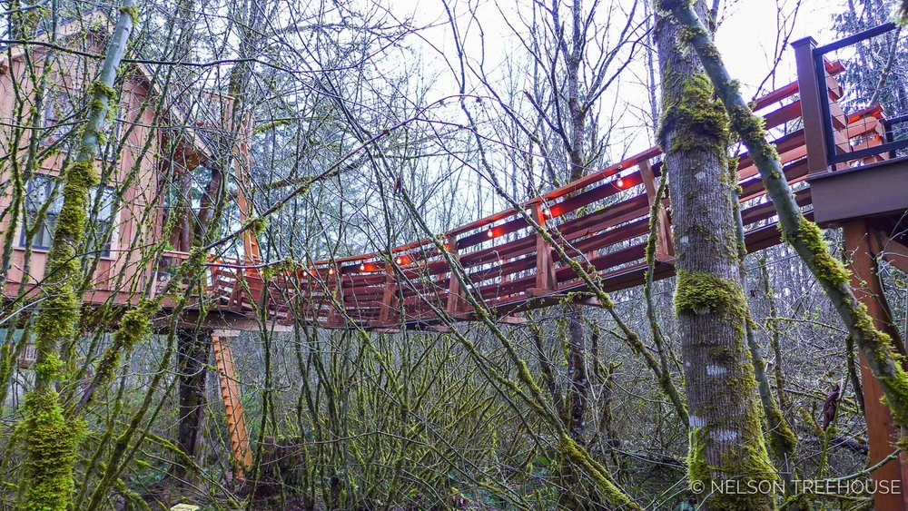Nelson Treehouse Supsension Bridge