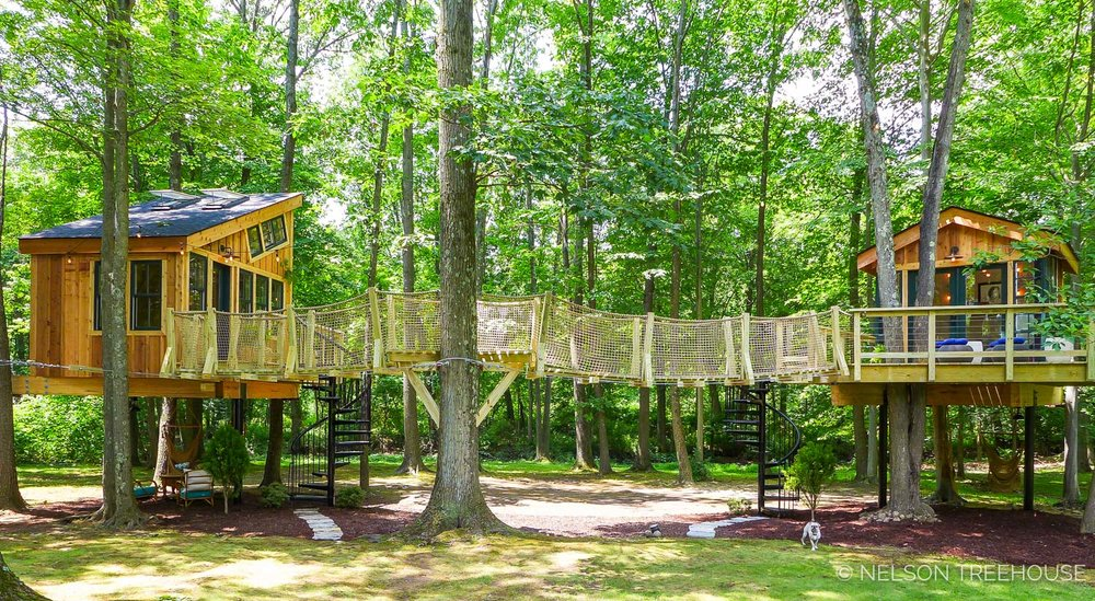 Grace Vanderwaal Treehouse Suspension Bridge - Nelson Treehouse