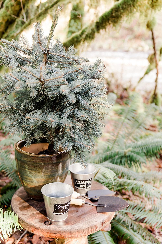 stromy-gary-elopement-preview161795.JPG