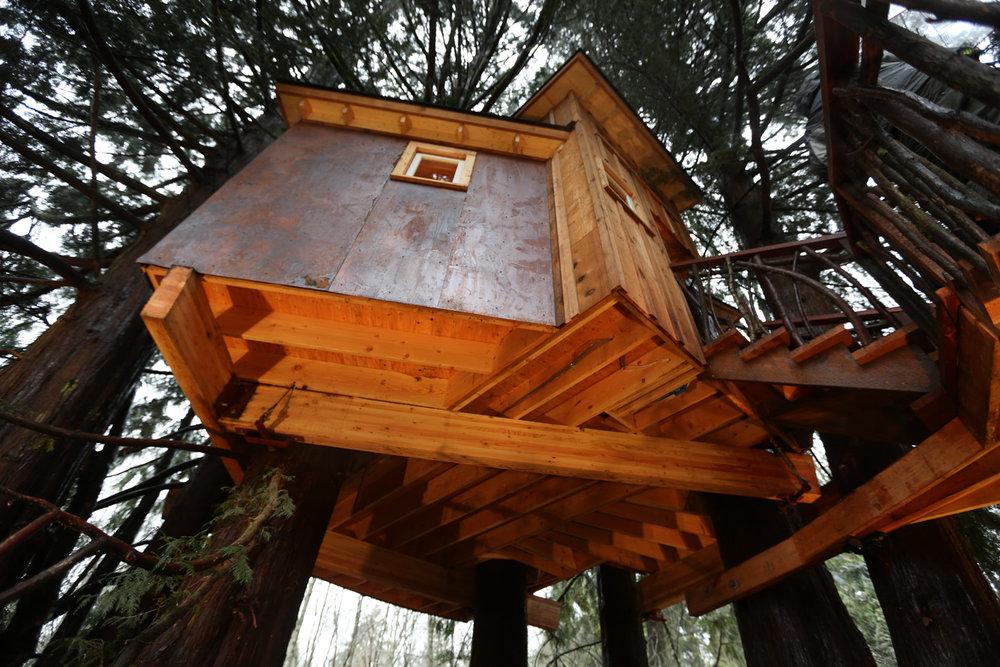 Nelson treehouse recording studio platform